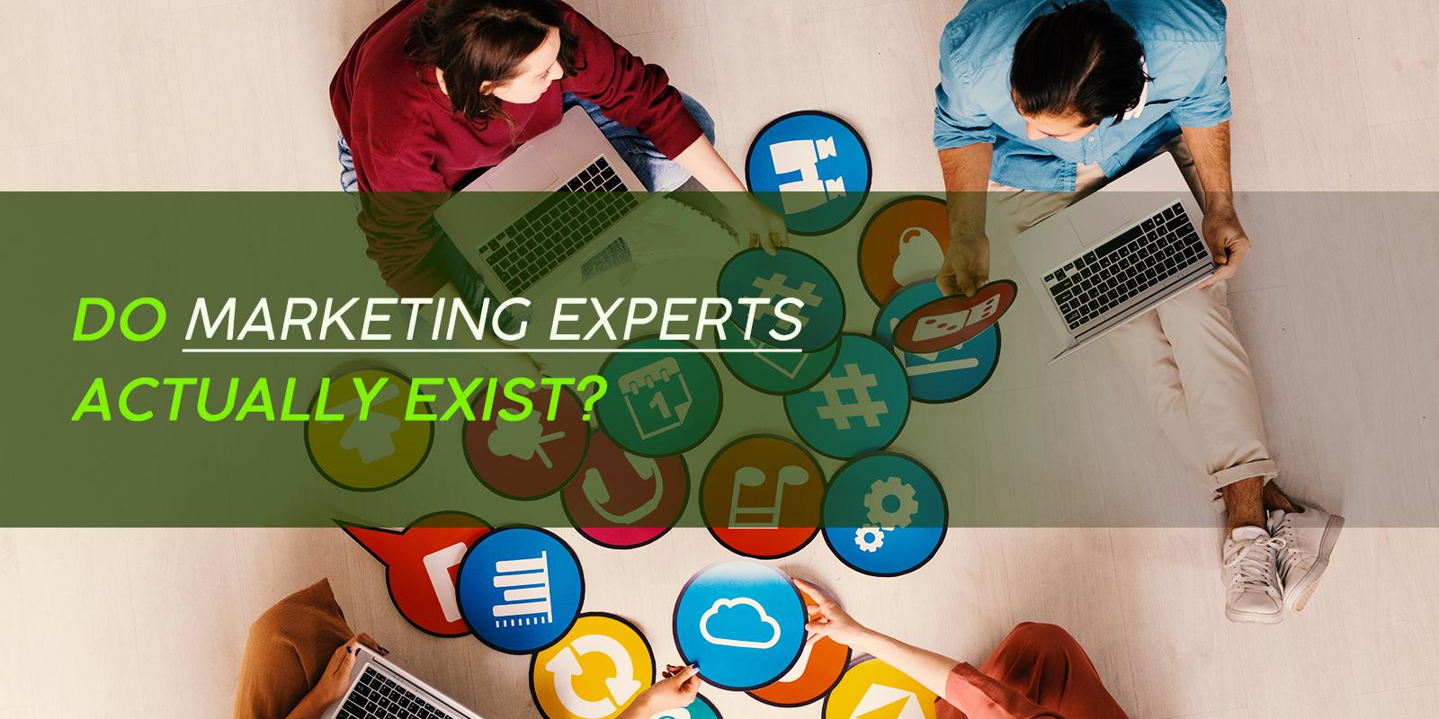 Do Marketing Experts Actually Exist?
